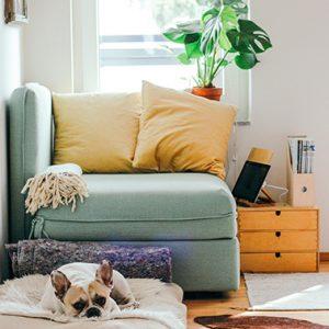 ambiance-cosy-muriel-janssone-decoration-grenoble-agencement-meubles-location-vente-appartement-maison-brina-blum-square