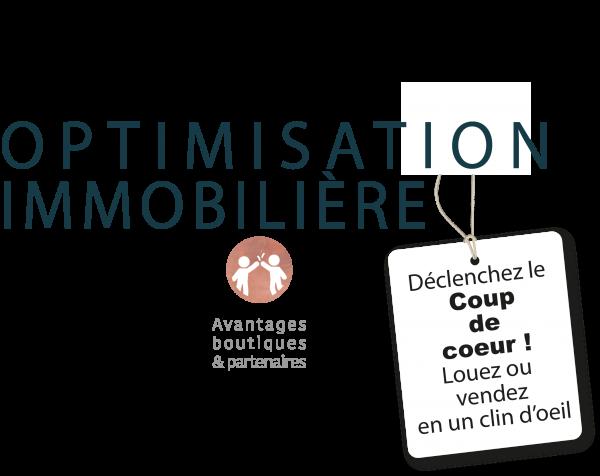 service-optimisation-immobiliere-deco-conseil-muriel-janssone